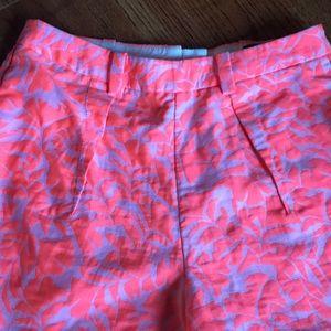 J Crew Shorts 00